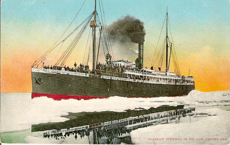 Figure 1:  SS SENATOR in an Alaskan ice floe, unused postcard. (USCS)